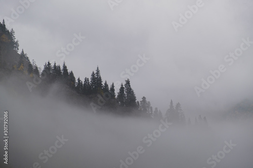 Tuinposter Ochtendstond met mist fog in the mountains