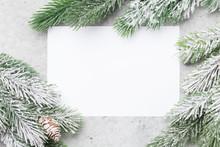 Christmas Card With Fir Tree