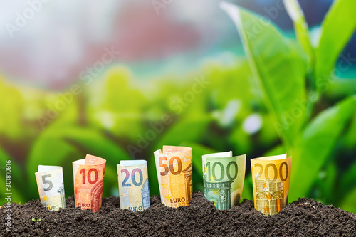 Euro Money. Different Euro banknotes from 5 to 200 Euro. Money and Agriculture texture.