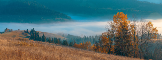Beautiful panorama of autumn, spruce trees covered, mountain hills with fog in valley and wide rural pastures.