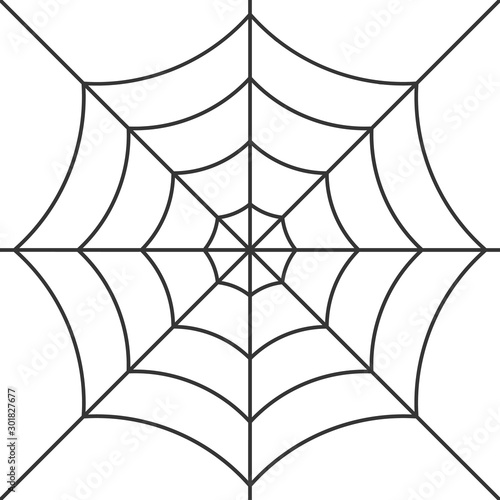 Vector cobweb background. Halloween spider web Fototapet