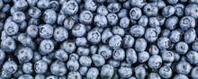 Blueberry Natural Fresh Berrie...