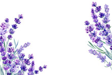 Set Of Lavender Flowers Elemen...