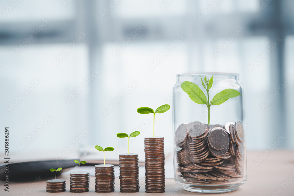 Fotografía coins with seed in clear bottle ,Business investment growth concept,saving conce