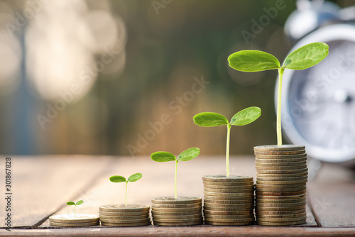 Obraz na plátně Money coin stack growing graph with sun light bokeh background,investment concept