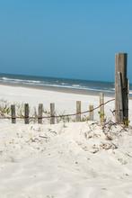 White Sand Windswept Beach II