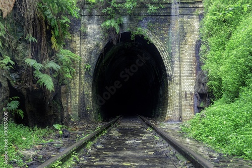 Foto Beautiful shot of train rails surrounded by nature leading to the dark tunnel