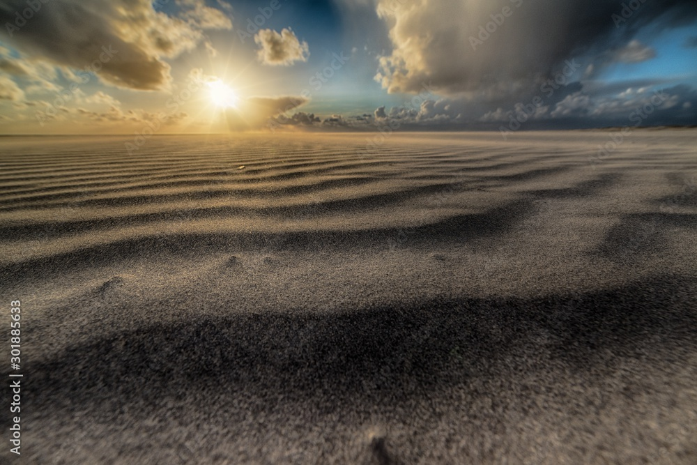Fototapety, obrazy: Beautiful shot of the sun rising over a sandy beach at the seashore