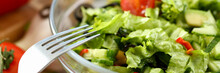 Silver Fork In Plate Mixes Salad Fresh Vegetables