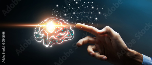 Human brain activity with plexus lines