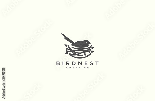 Fototapeta Amazing bird and nest logo design  obraz