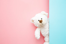 Smiling White Teddy Bear Looking Behind Pastel Blue Wall. Mock Up For Happy, Positive Idea. Empty Place For Inspiration, Emotional, Sentimental Text, Quote Or Sayings On Pink Background. Front View.