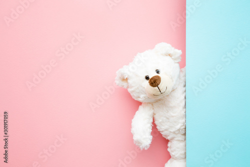 Fotomural Smiling white teddy bear looking behind pastel blue wall