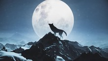 Wolf Howling At The Moon Snowi...