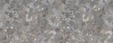 kwiaty malować i cementowe tło - 301922845