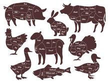 Butcher Diagrams. Cutting Lines Different Parts Domestic Farm Animals Silhouettes. Outline Meat Schemes, Market Menu Vector Set