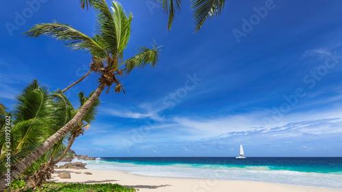 Paradise tropical beach Fototapete