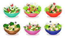 Vegetable Salads Vector Set Appetizing Dishes From Fresh Products