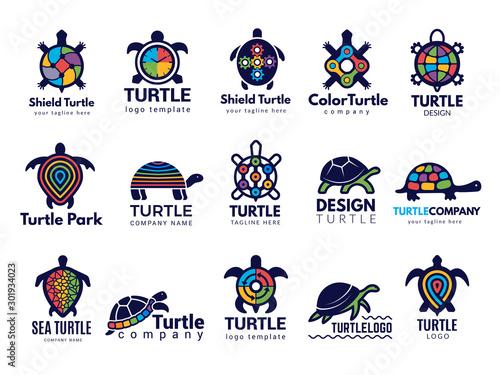 Obraz na plátně Turtle symbols