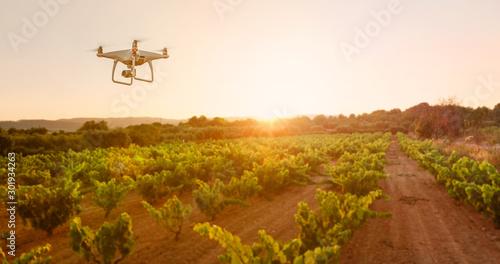 Fototapeta Drone controlled smart farming obraz