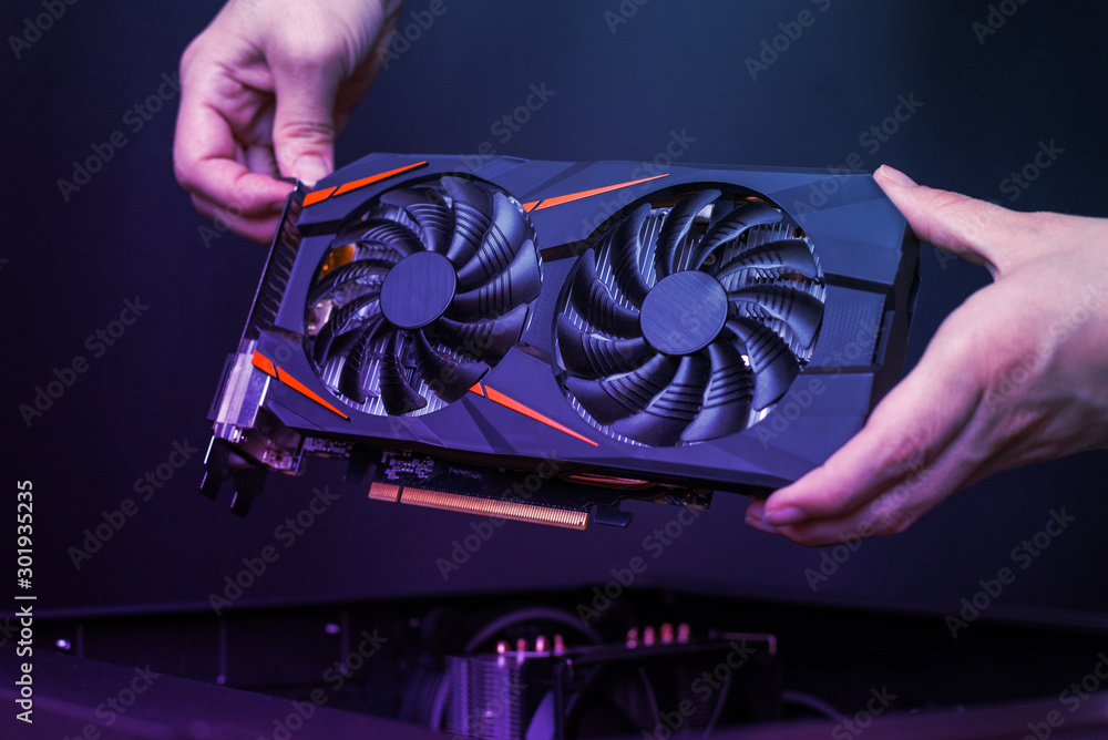 Fototapety, obrazy: Mounting a modern graphic card to gaming computer. High performance graphics card with two coolers. The hands place the card in the computer case.