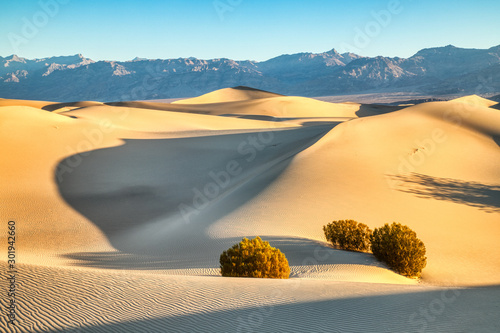 Mesquite Dunes in Death National Park at Sunrise