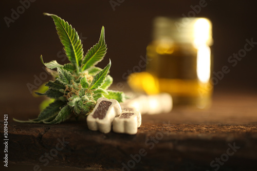 Photo Medical marijuana cannabis cbd oil dog food