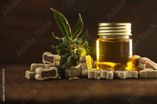 Fotografia, Obraz  Medical marijuana cannabis cbd oil dog food