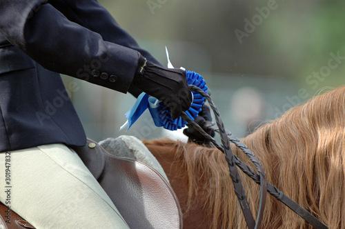 Cuadros en Lienzo English Horse Show Dressage Blue Ribbon First Place