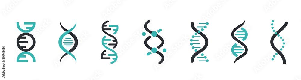 Fototapeta DNA Icons set. DNA Structure molecule icon. Vector molecule. Chromosome icon