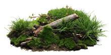 Green Moss On Soil, Dirt Pile ...