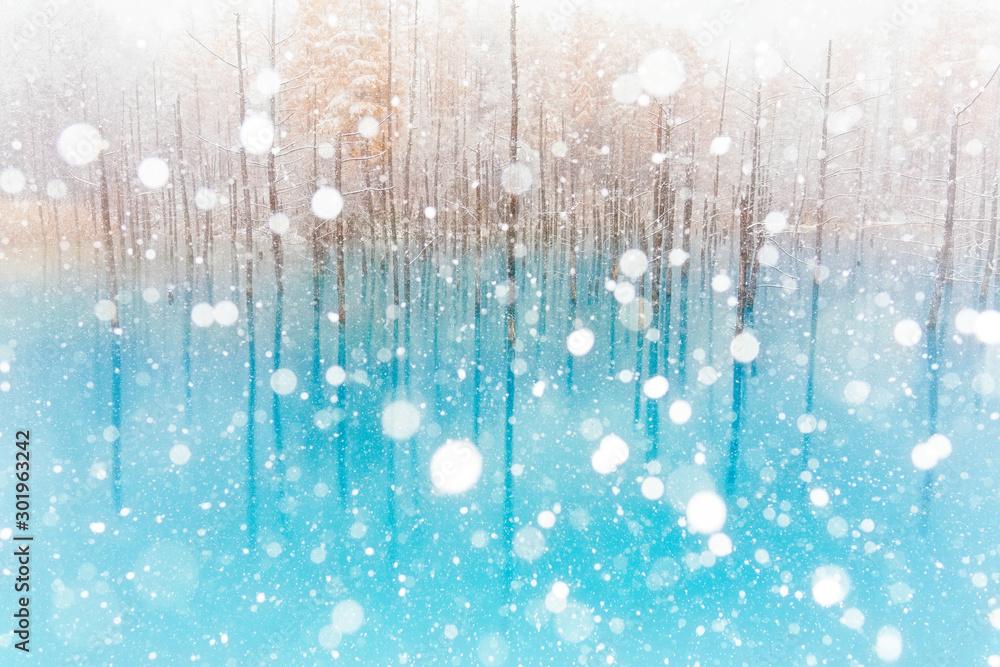 Fototapety, obrazy: 冬の青い池