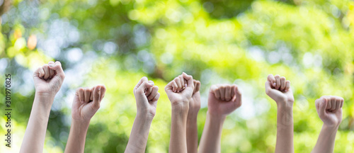Vászonkép Panoramic group of hands business team raised fist air corporate celebration victory