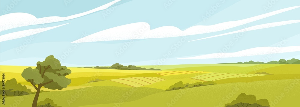 Fototapety, obrazy: Fields panorama flat vector illustration. Beautiful countryside scenery, picturesque rural landscape, scenic view. Oak tree on glade, green hills under cloudy sky. Natural environment, vivid nature.