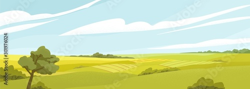 Fototapeta Fields panorama flat vector illustration. Beautiful countryside scenery, picturesque rural landscape, scenic view. Oak tree on glade, green hills under cloudy sky. Natural environment, vivid nature. obraz