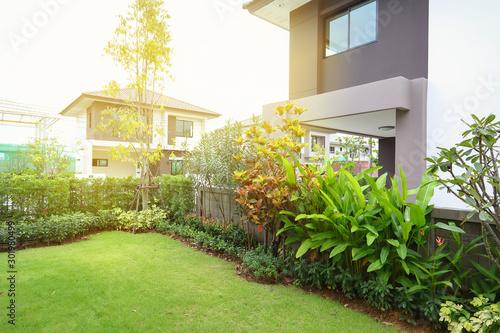 green grass turf in backyard garden landscaping of home Wallpaper Mural
