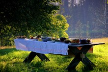 Wooden Table Under Oaks With T...