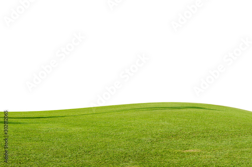 Canvas Prints Meadow Green grass field isolated on white background with clipping path.