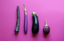 Different Types Of Eggplants (aubergine)