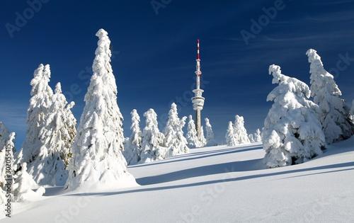 Fotografia, Obraz  television transmitter praded and snowcapped trees