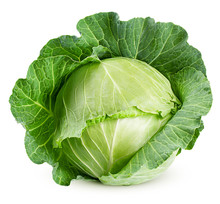Cabbage Isolated On White Back...