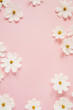 Leinwanddruck Bild - Minimal styled concept. White daisy chamomile flowers on pale pink background. Creative lifestyle, summer, spring concept. Copy space, flat lay, top view.