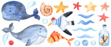 Watercolor Marine Elements For...