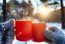 Young Man And Young Woman In Knitted Wool Mittens With Mugs Of Hot Drink On Sunny Frosty Day On Forest Background