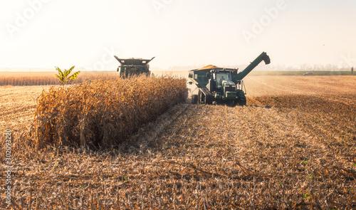 Foto auf Leinwand Dunkelbraun Combine Harvester Machine Finishing Work on a Agricultural Corn Field