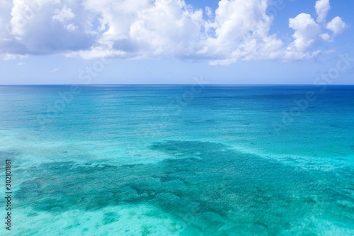 Canvas Prints Green coral Caribbean sea. Aerial view from drone