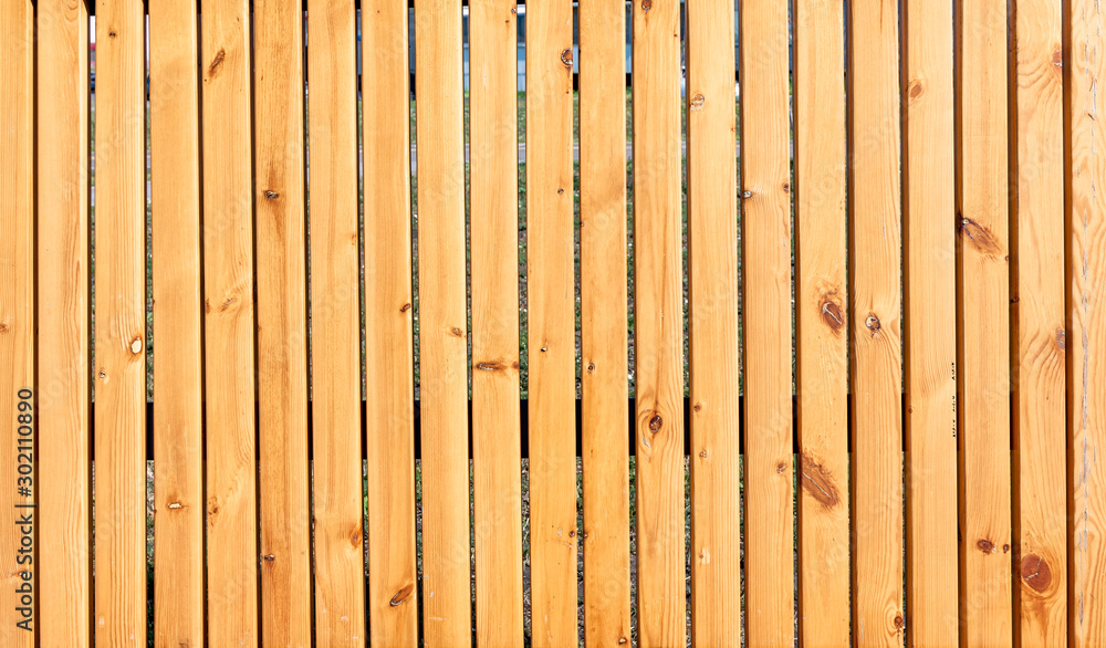 Fototapety, obrazy: Old wood fence texture background.