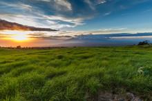 Maui, Thompson Road Sunset Nea...