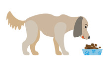 Dog Eating Dry Food From Bowl Isolated Cartoon Canine Animal. Cute Domestic Puppy Feeding From Plate, Nutritional Snack For Labrador Or Retriever. Vector Illustration In Flat Cartoon Style