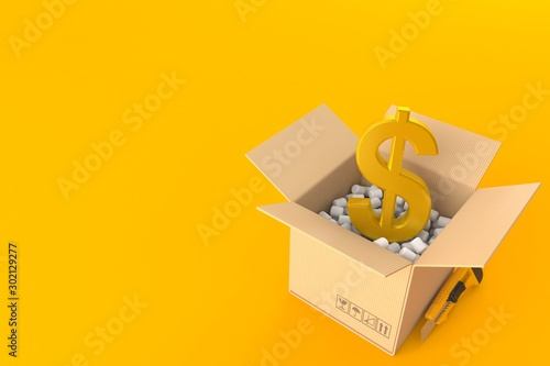 Dollar currency inside package Canvas Print